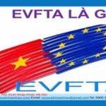 TÌM HIỂU VỀ HIỆP ĐỊNH THƯƠNG MẠI TỰ DO EVFTA?